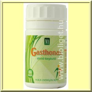 Gasthonax-gastroanax-Varga-gyogygomba_1